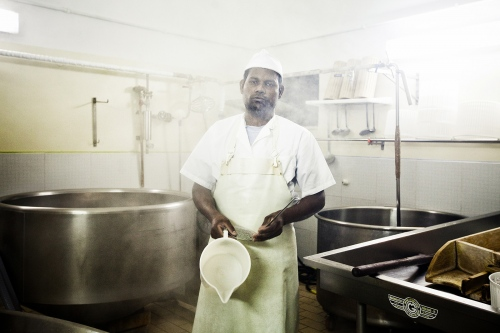 Cheese maker, Sicily 2012