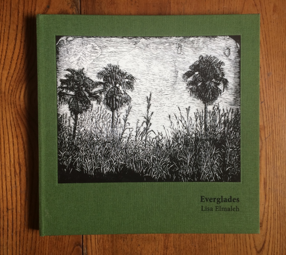 Photography image - Loading Everglades_Book_Cover.jpg