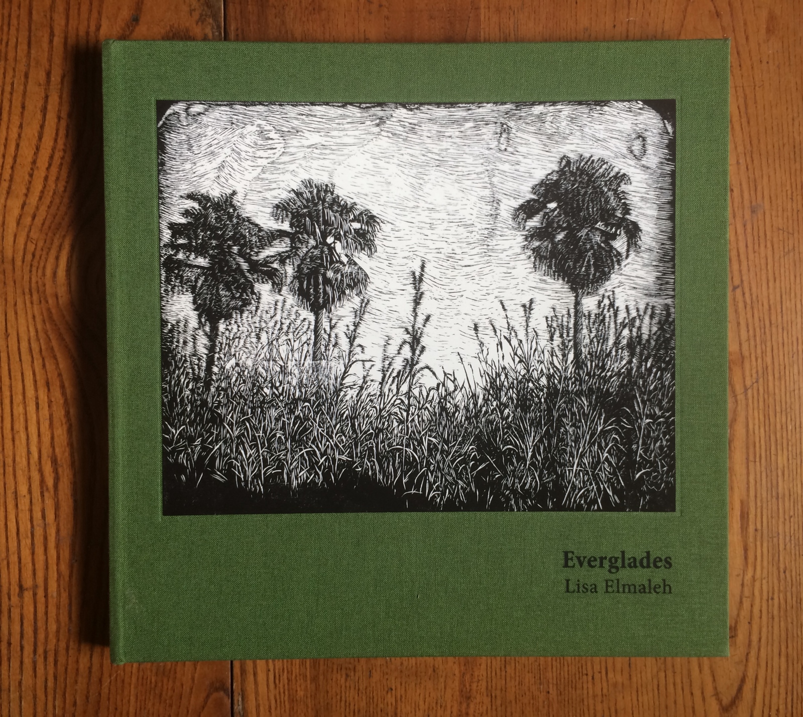 Art and Documentary Photography - Loading Everglades_Book_Cover.jpg