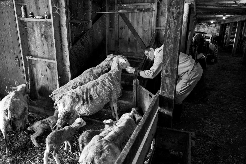 Art and Documentary Photography - Loading DSCF1940.jpg