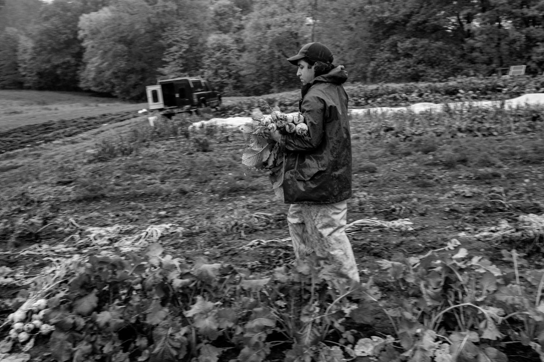 Art and Documentary Photography - Loading DSCF2897.jpg