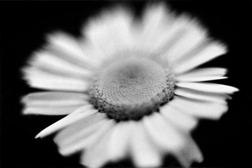 Art and Documentary Photography - Loading SW0021.jpg