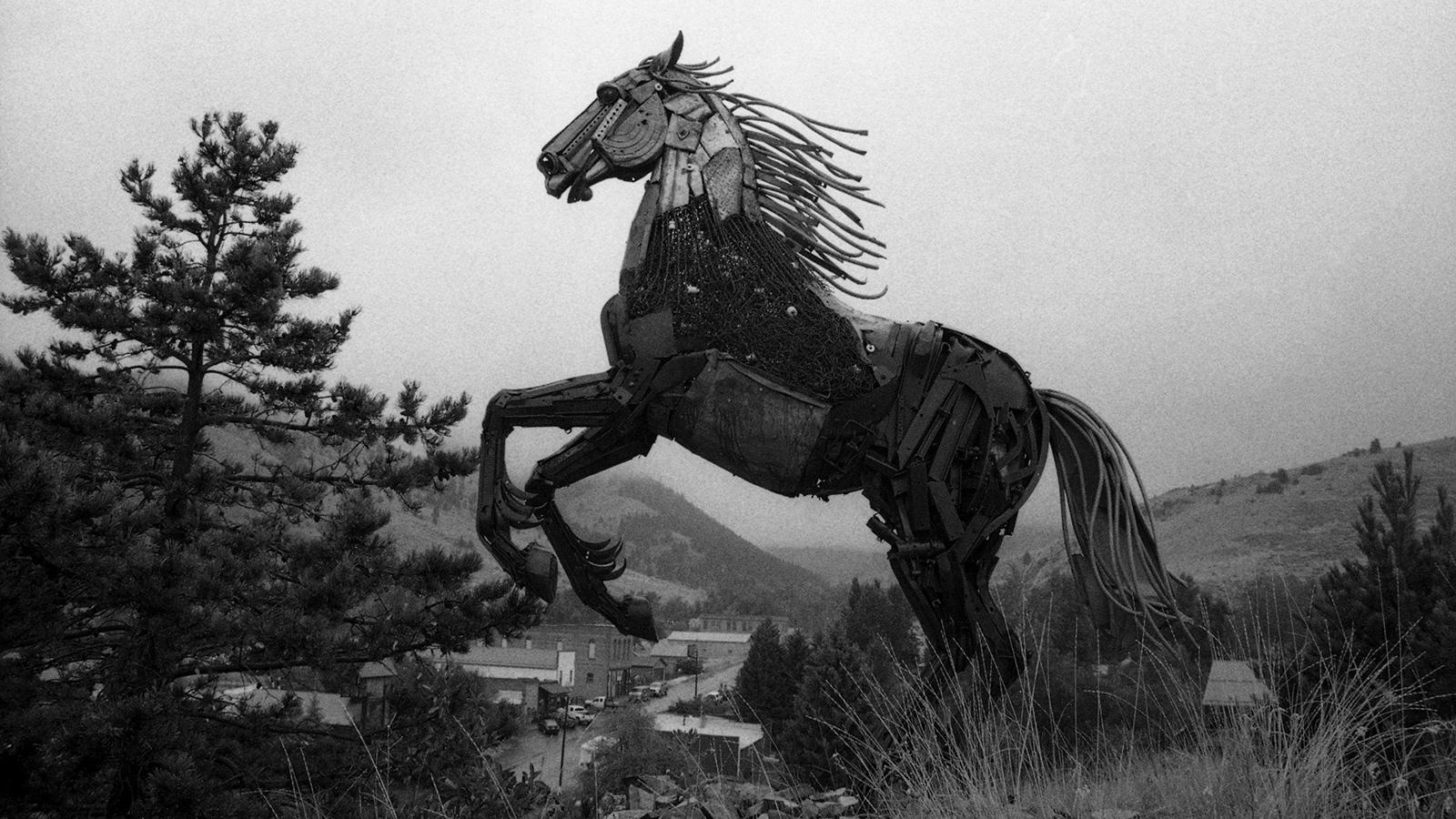 Art and Documentary Photography - Loading pony1017.jpg
