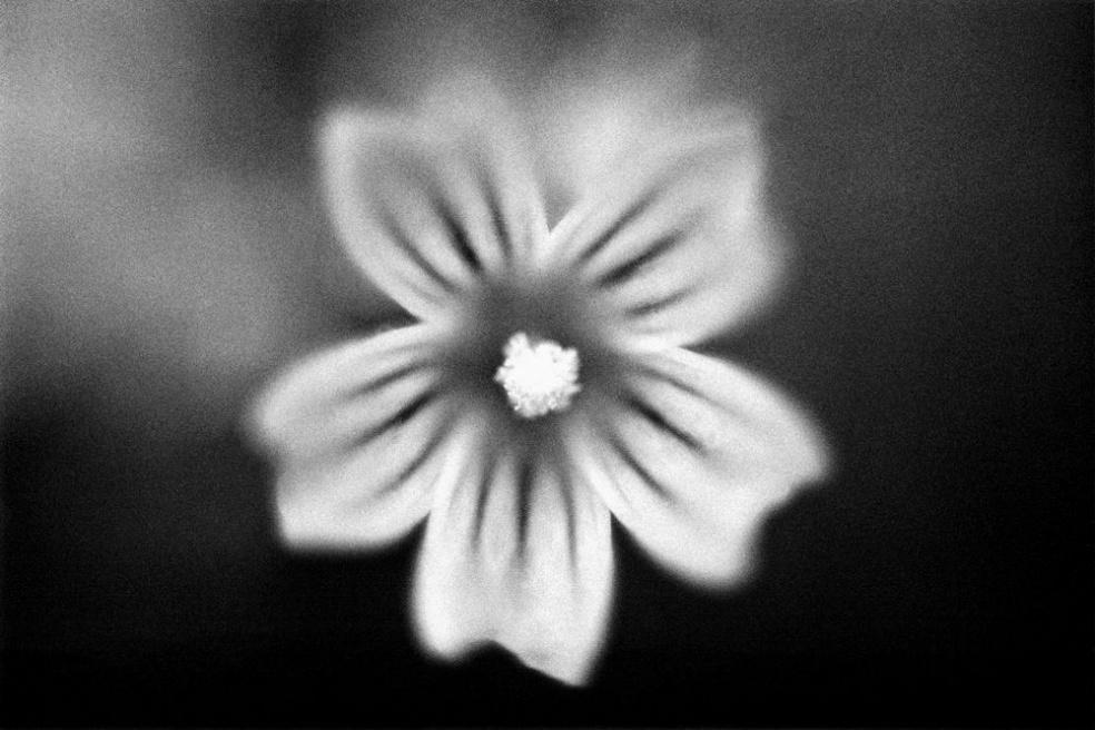 Art and Documentary Photography - Loading SW0036.jpg