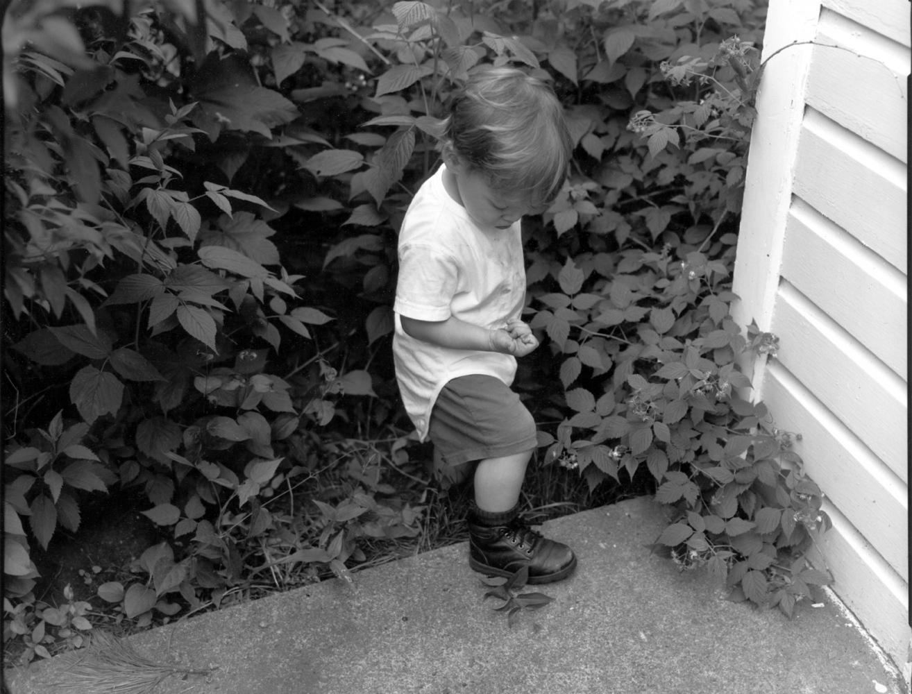 Art and Documentary Photography - Loading boyholdingberries.jpg