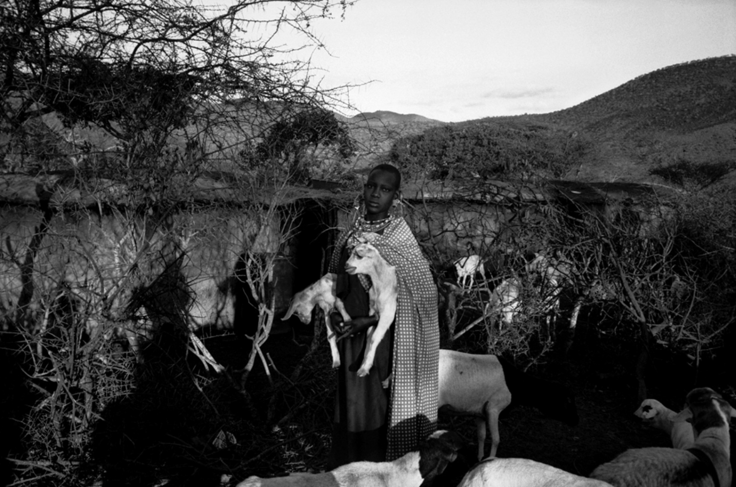 Girl Holding Lambs, Chyulu Hills, Kenya, August 2002