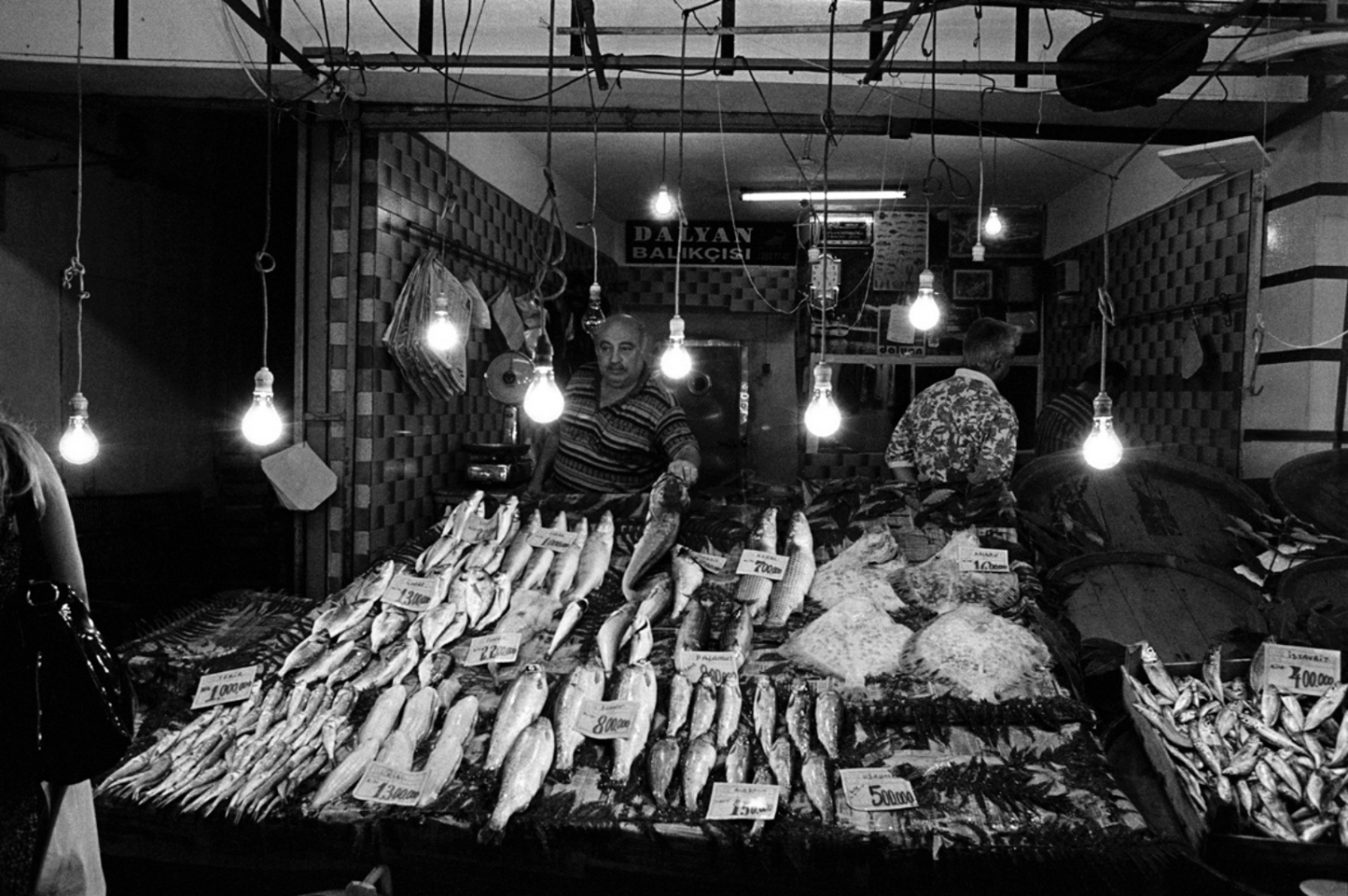 Fish and Lightbulbs, Turkey, Summer 1997