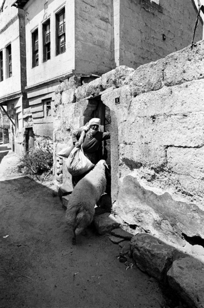 Sheep Going Home,Turkey, Summer 1997