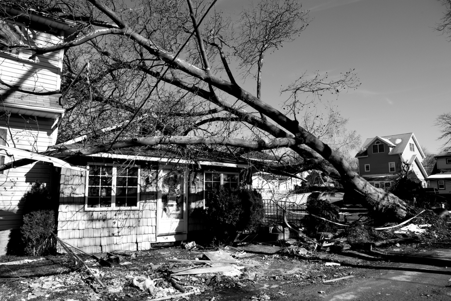 An old tree has fallen on top of a home during Hurricane Sandy in New Dorp Beach, Staten Island, N.Y. on Nov. 9, 2012. New Dorp Beach was devastated by Hurricane Sandy and now faces the long road to recovery.