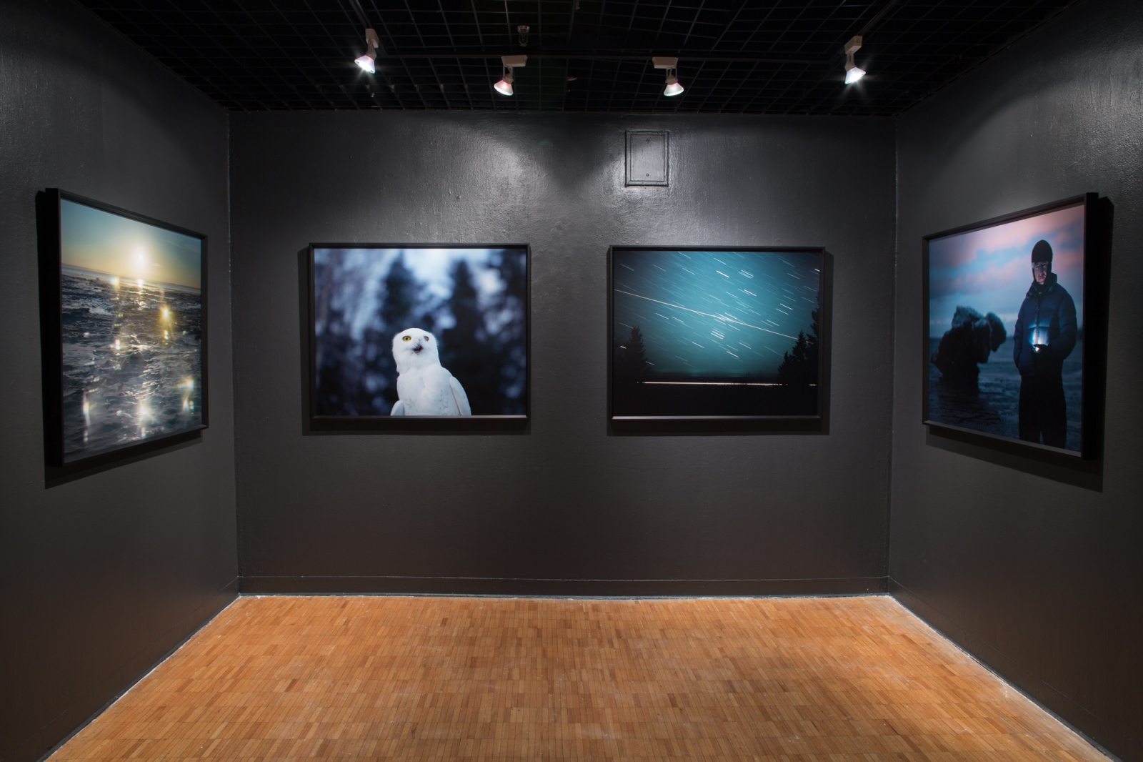 Origins Exhibition with Rachel Jump, Red Eye Gallery Providence, RI, USA, 2014
