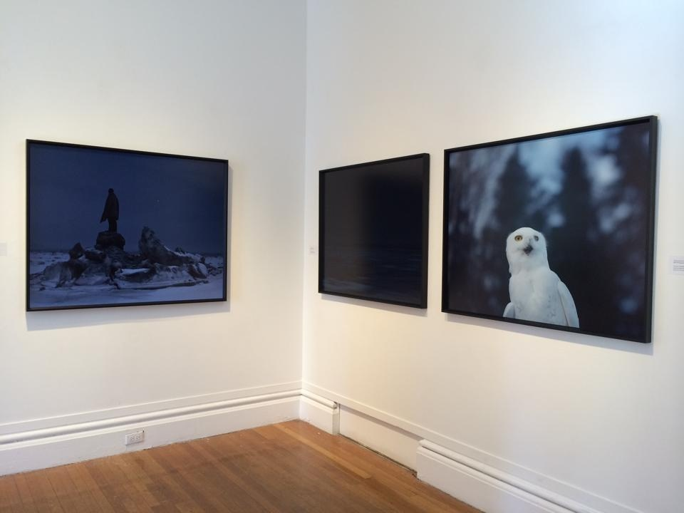 RISD Senior Invitational Exhibition Group Exhibition, Woods-Gerry Gallery Providence, RI, USA, 2014