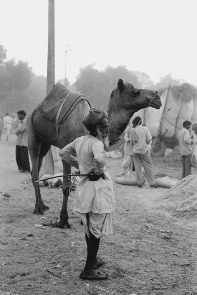 Man with Camel, Pushkar, India, November 2003