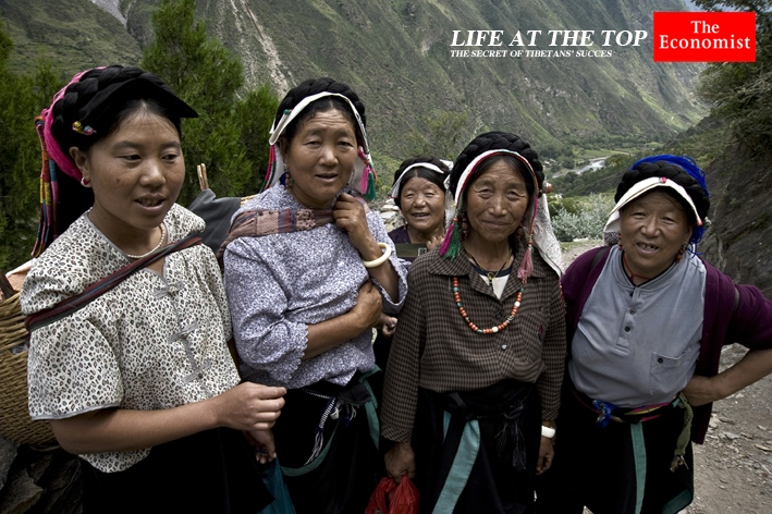 The Economist (UK) http://www.economist.com/news/science-and-technology/21606257-secret-tibetans-success-lies-ancestors-who-were-not-quite-human-life