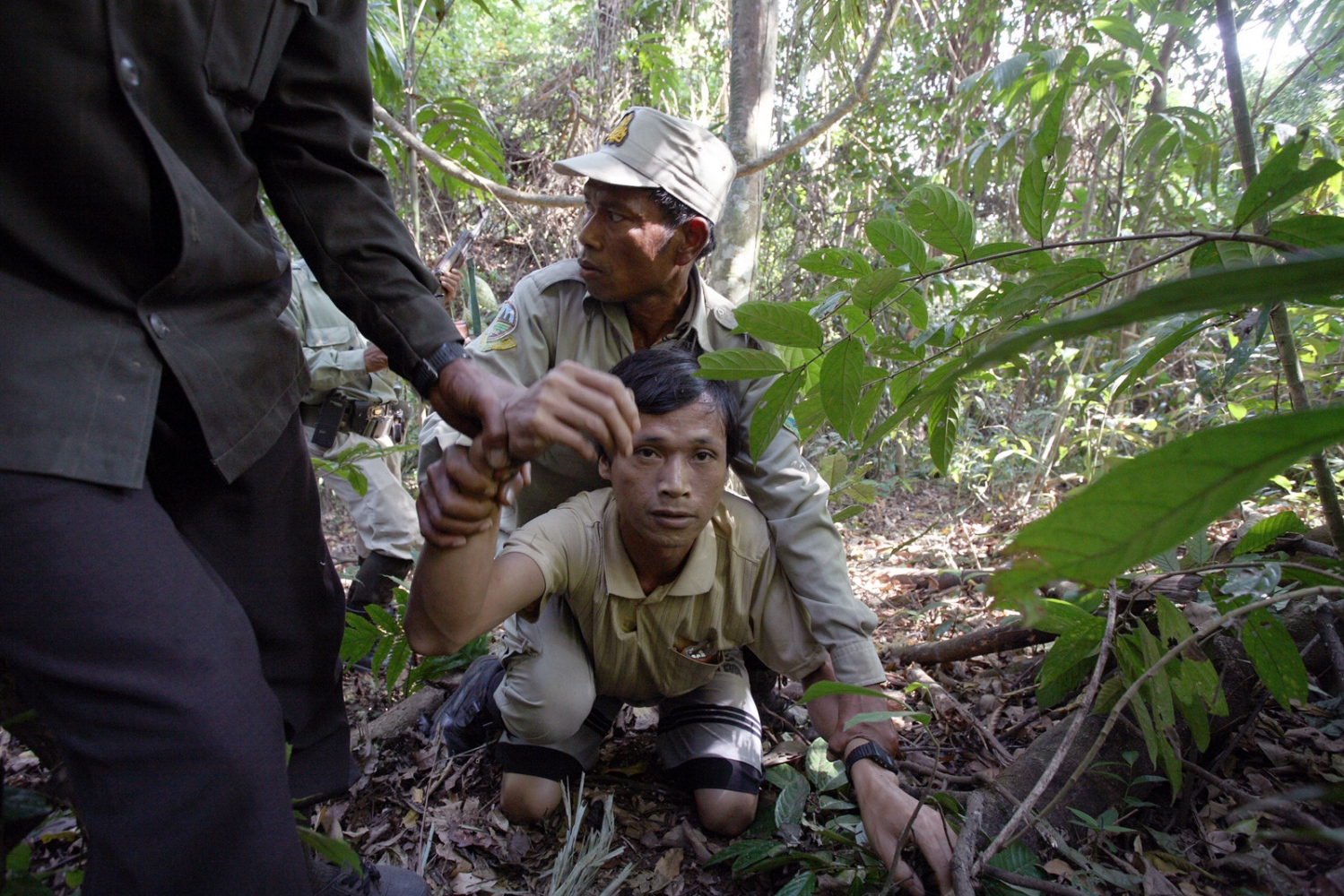 Whilst on a patrol a group comprising of park rangers and Cambodian soldiers catch a worker of an illegal sassafras oil distillery. He is a Vietnamese national sent to work here from Phnom Penh. After being pinned to the ground, he is searched and hand-cuffed. Sassafras distilleries that produce the oil from rare Mreah Prew Phnom trees have become a real problem in this area but difficult to stop due to the remoteness of the forest and the high demand and profitablility as the oil can be used as an ingredient for the drug Ecstasy.