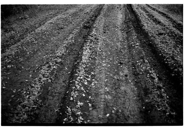 Art and Documentary Photography - Loading village070.jpg