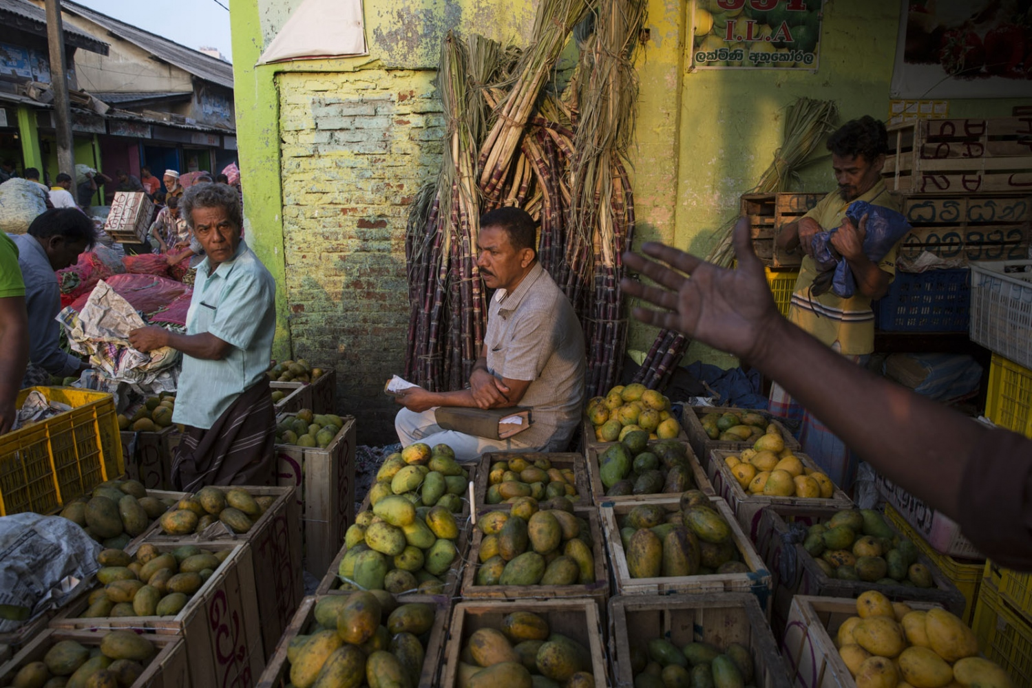 Early morning activities at Manning wholesale fruit and vegetable market in Central Colombo. Manning market has been at this location for over one hundred years with most stalls passed down hereditary lines. Colombo, Sri Lanka.