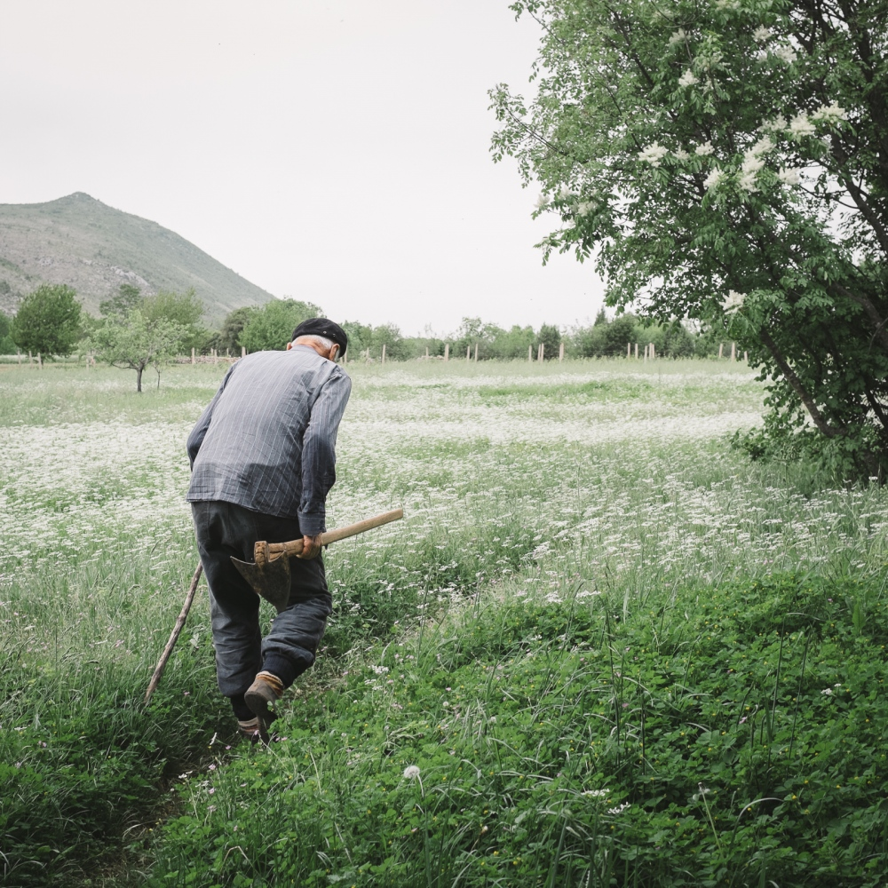 Zulfo, despite his age, spends most of the day working alone in the fields where he spent his childhood. He often tells me how beautiful it was to grow up in a village full of people and surrounded by nature.