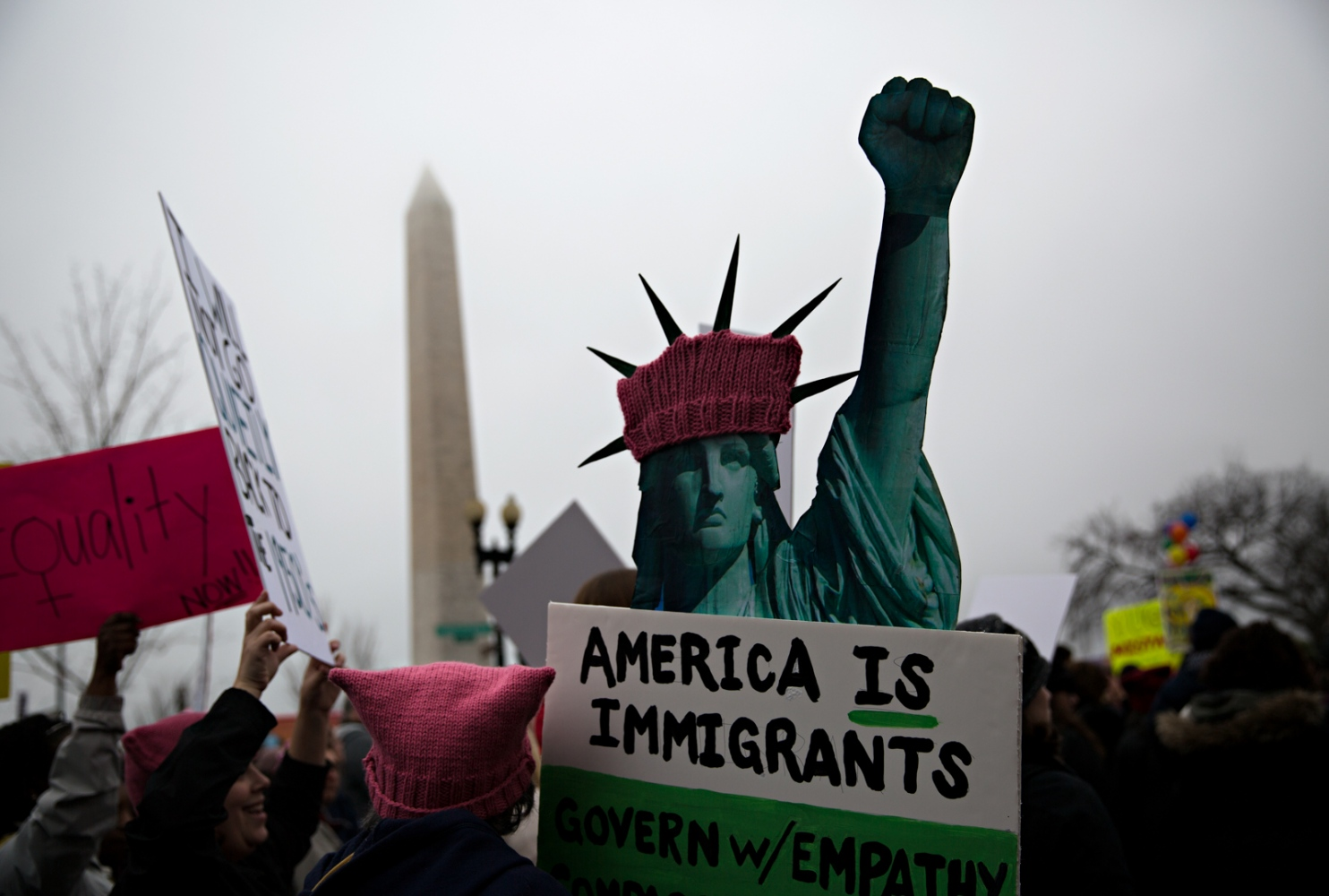 Art and Documentary Photography - Loading WomansMarch-6-Edit.jpg