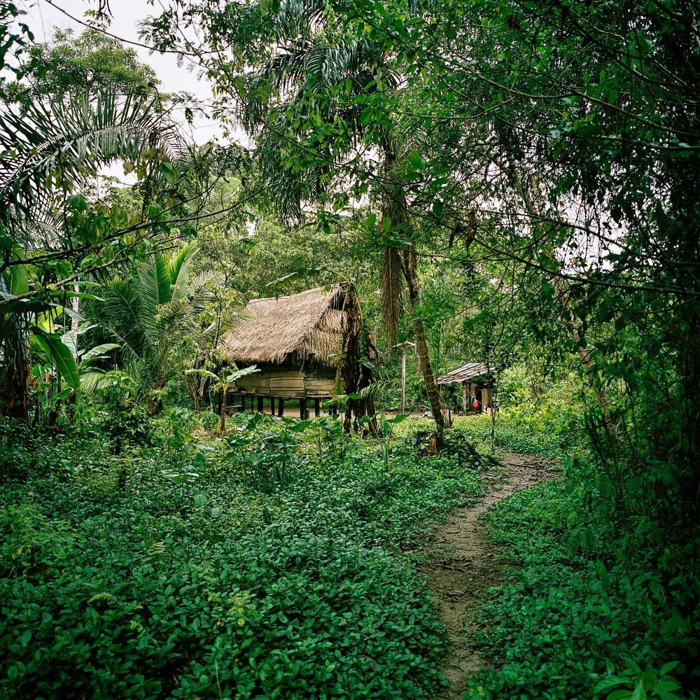 The Machiguenga indigenous community of Shipetiari. This village has been visited numerous times by the Mashco-Piro who reside on the same side of the Madre de Dios River. One of their members Leo Perez was killed  by a bow and arrow during a raid on the village in May of 2015.