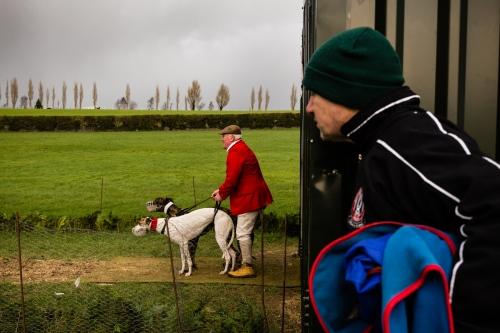 Irish Greyhound Industry