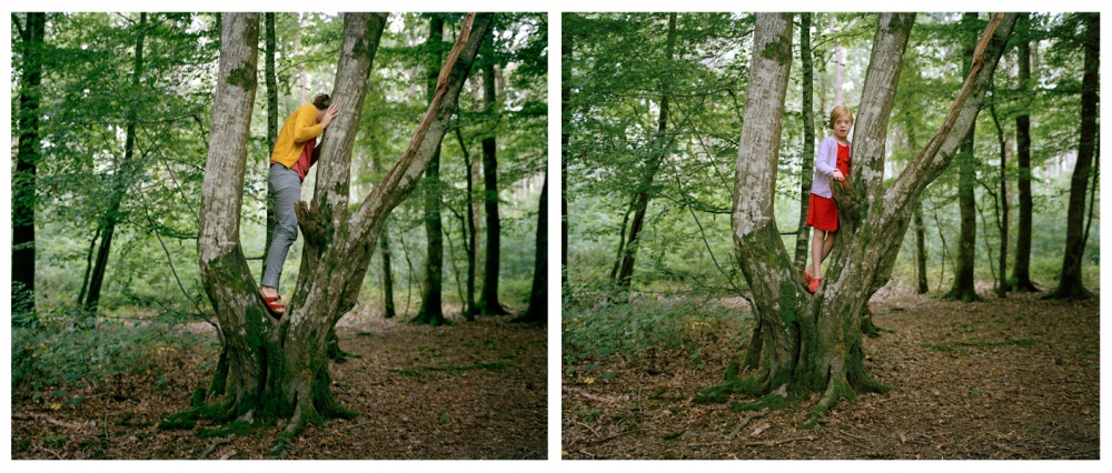 Art and Documentary Photography - Loading woods.jpg