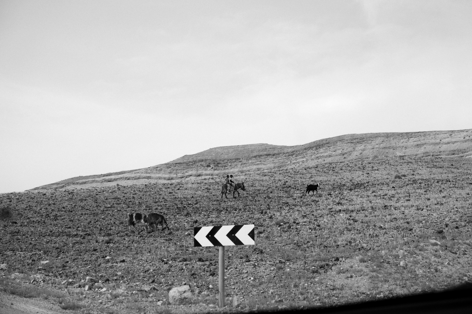 Art and Documentary Photography - Loading DSC03554.jpg
