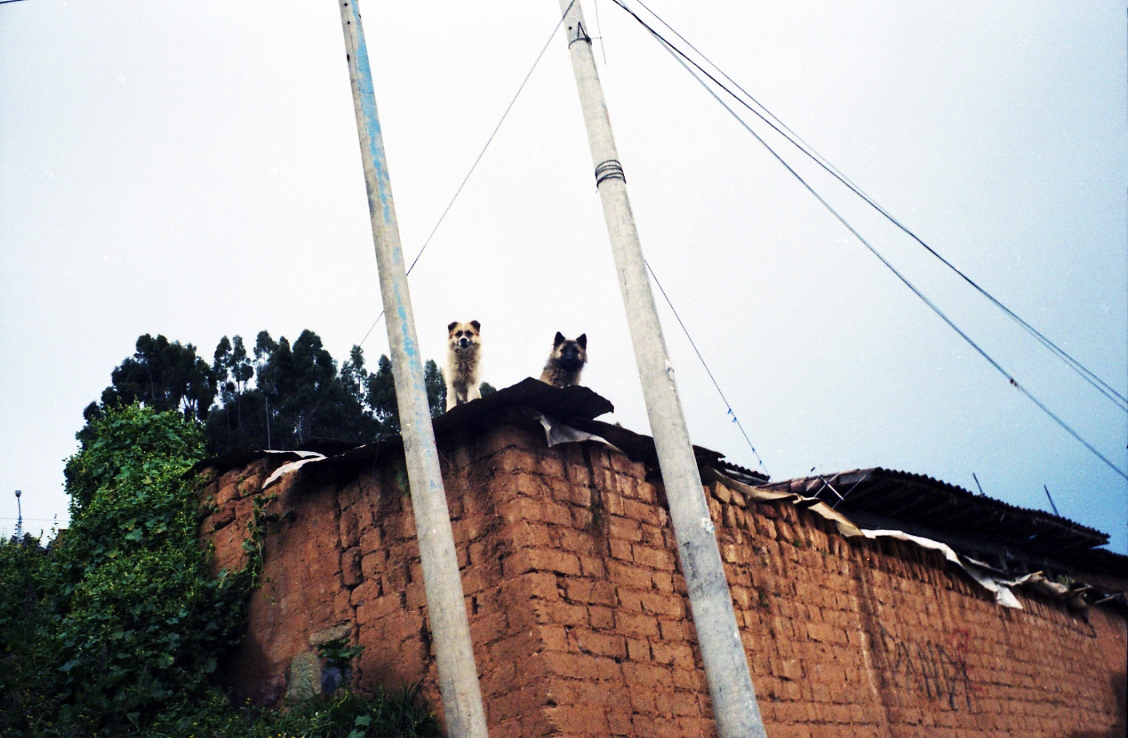 Art and Documentary Photography - Loading 15_Peru109.jpg
