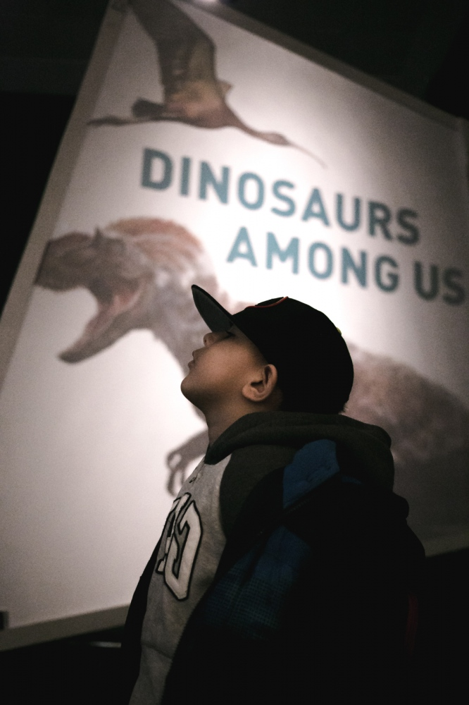 Jayden stands in front of a dinosaur exhibit at the Museum of Natural History in New York City.
