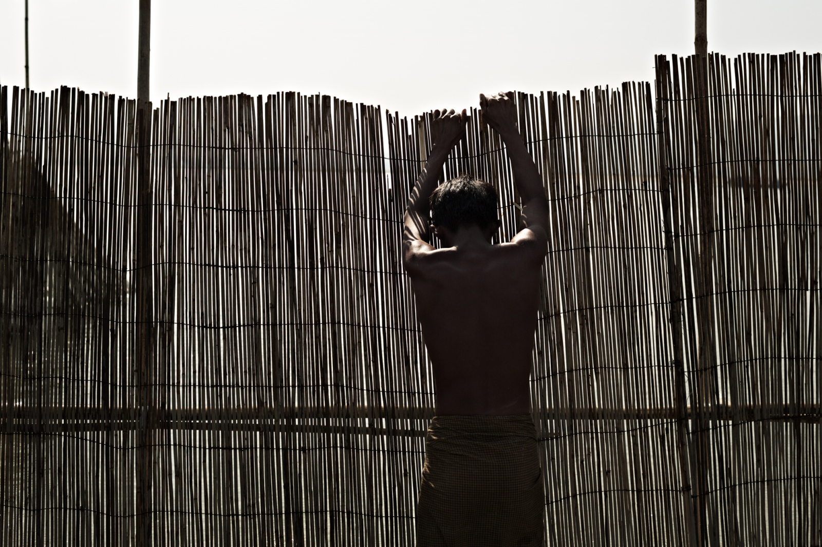 Outside of Mandalay City, a fisherman places bamboo fencing across a shallow channel in the Irrawaddy River. The fencing will funnel fish into waiting nets.