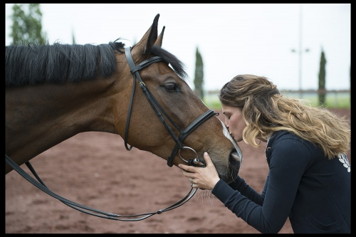 Fixdesign Horseriding web campaign 2014