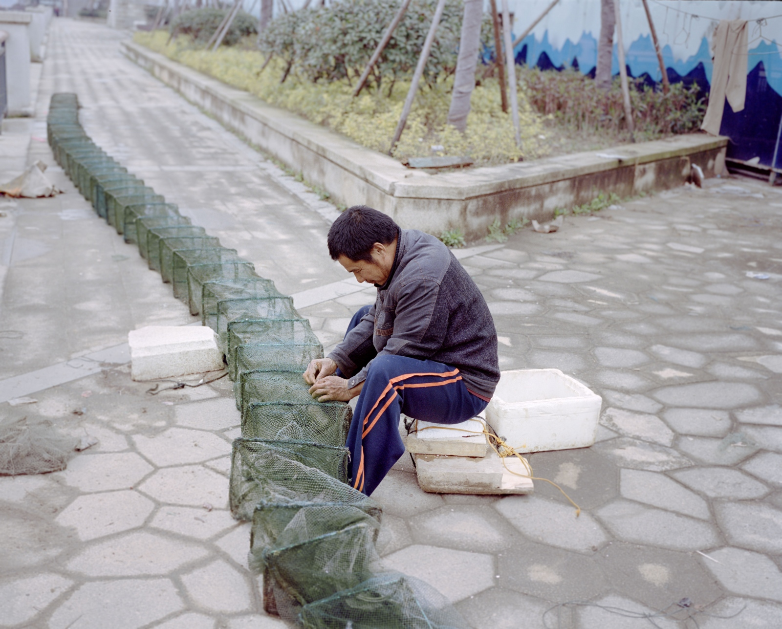 Min River Bank 闽江江畔