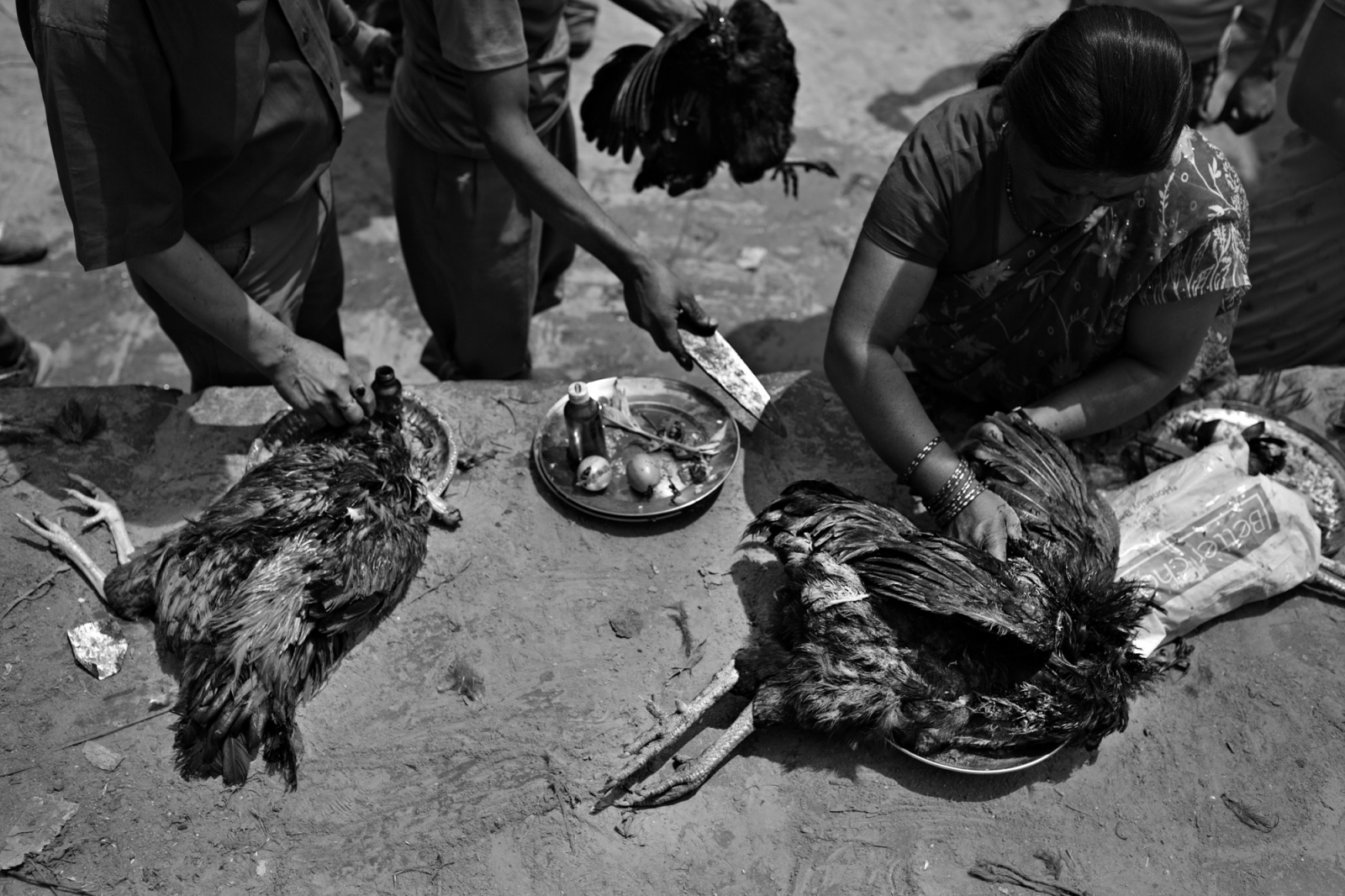 Devotees slaughter chickens as offerings during a small local festival meant to bring in a good harvest and luck for the spring.