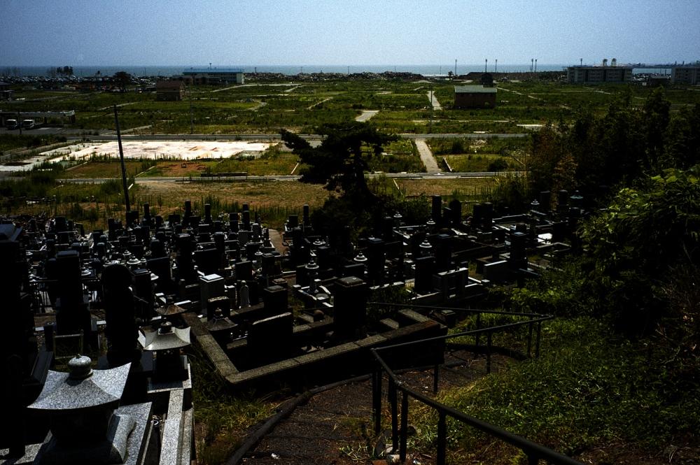 Solemn Pines, Tohoku