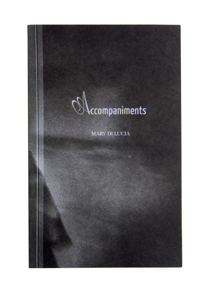 Accompaniments By Mary Di Luca Red Hook Editions 2017 Published in relation to Past Perfect Continuous by Igor Posner