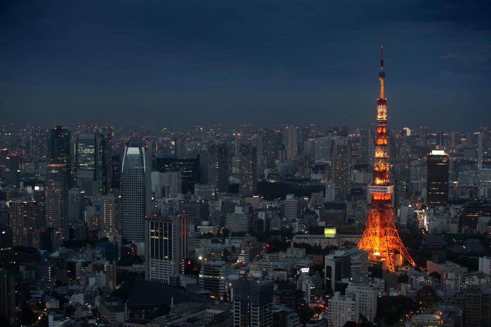 Photography image - Tokyo at dusk (Tokyo, Japan)