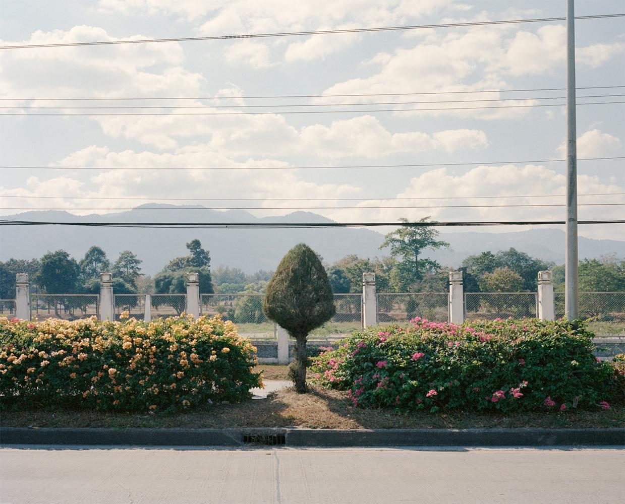 Art and Documentary Photography - Loading chin_sabrina_02.jpg