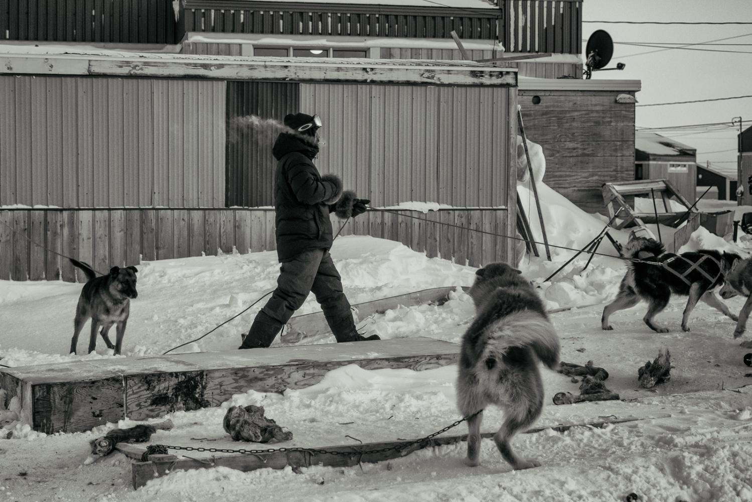 Art and Documentary Photography - Loading Inukjuak-12.jpg