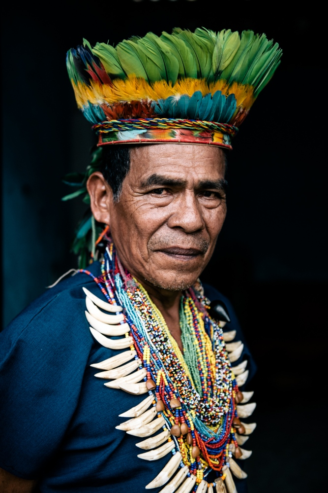 Taita Juan Yaiguaje in his home in Mocoa, Colombia, traditionally adorned in ceremonial garb of jaguar teeth and beaded necklaces, plus crown of guacamayu feathers. Taita Juan is a traditional 'medico', or traditional healer of the indigenous Sciona people of Putumayo. He is one of the most revered and respected elder shamans of his community. He specializes with the Yagé brew, or Ayahuasca vine, a powerful plant remedy known to cure any sort of illness on all levels, physical, emotional, mental, and spiritual.⠀