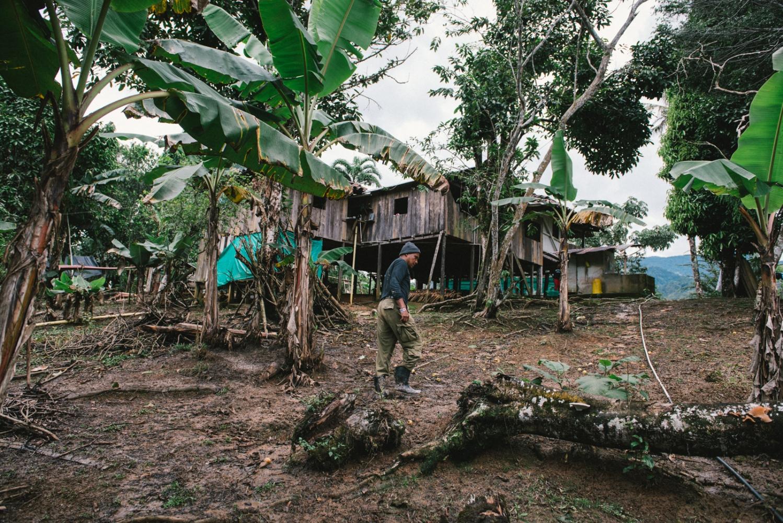 Argemiro walking up to the farm of his teacher and 'curandero', Taita Juan Yaiguaje in the jungles of Mocoa, Putumayo, Colombia.