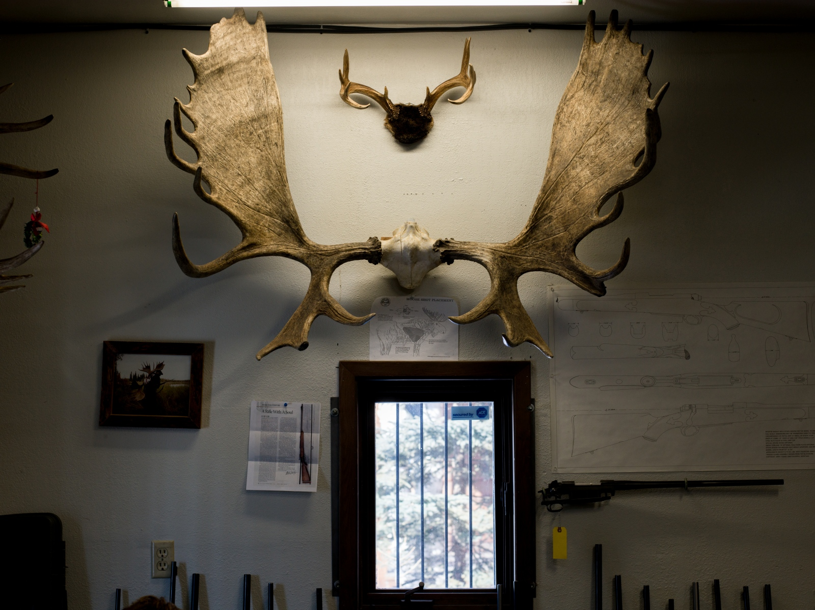 One of the walls in Andrew Hawk's gunsmithing shop in Anchorage, Alaska. While he hunts other animals, moose hunting is what he says he does most. Hawk works from home along with his girlfriend Jen Jolliffe, an acupuncturist. Both receive healthcare coverage through the ACA and are concerned about what the AHCA for health coverage would mean for them.