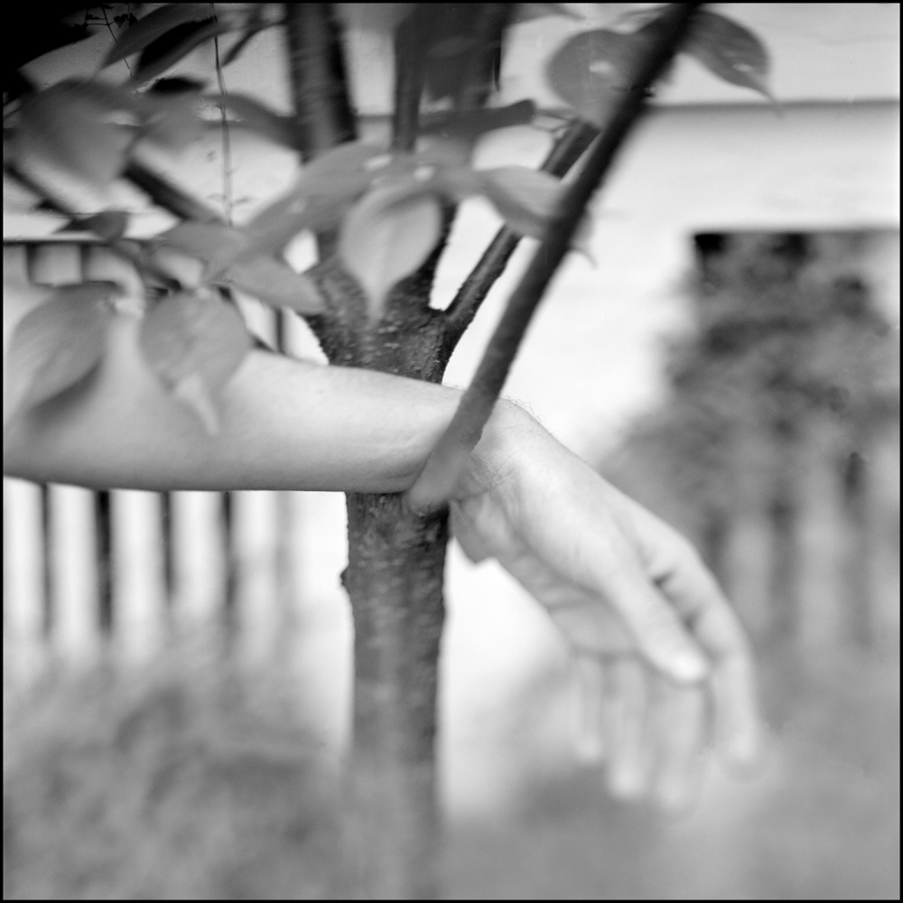 Art and Documentary Photography - Loading hand-4x5.jpg