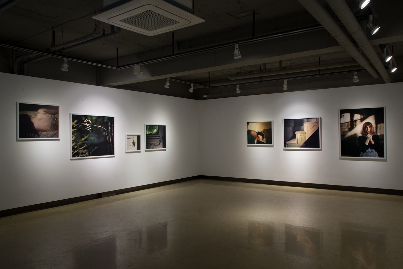 Installation of  A Rose By Any Other Name at the Seohak Art Space, Jeonju, South Korea