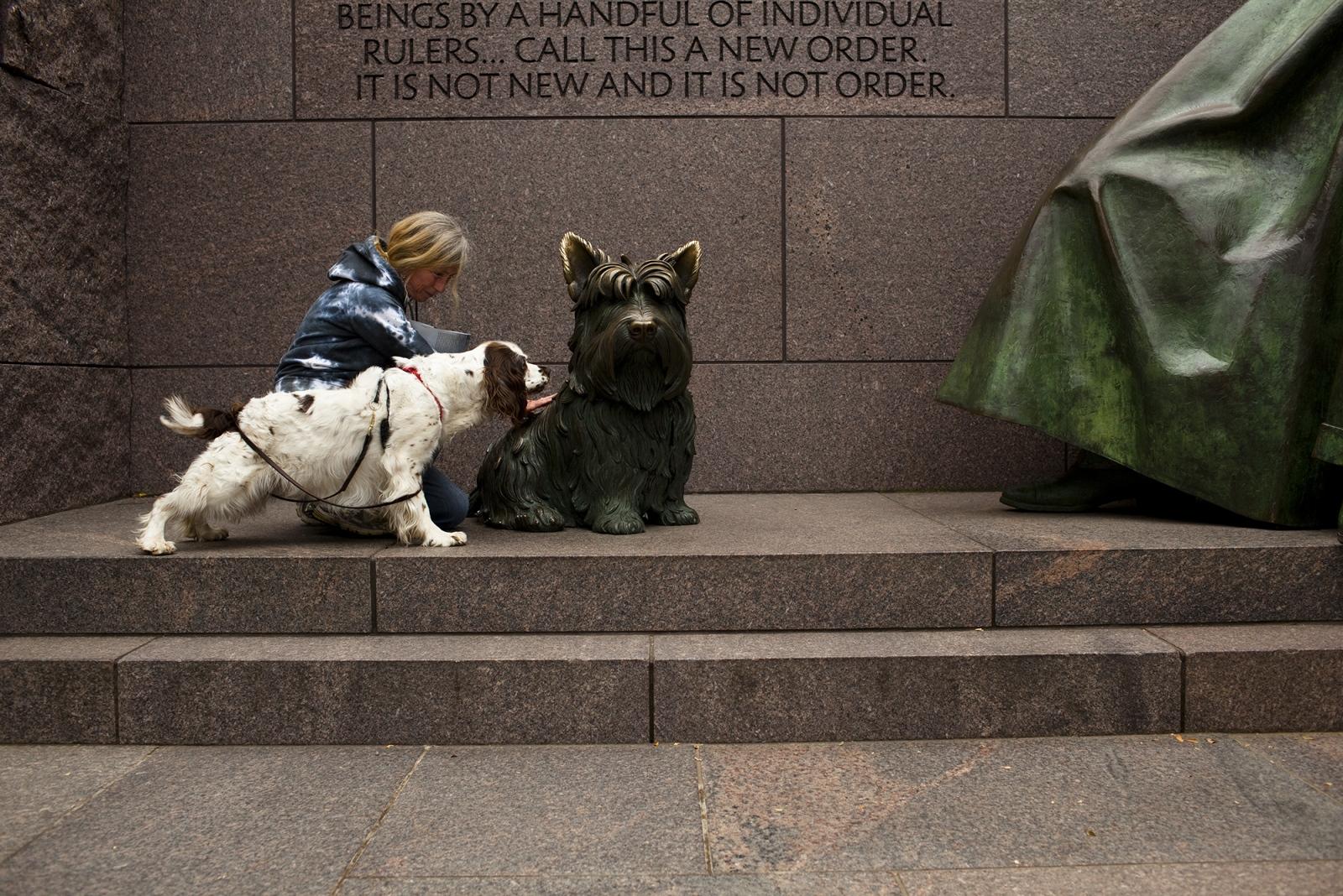 Fala statue, FDR Memorial.