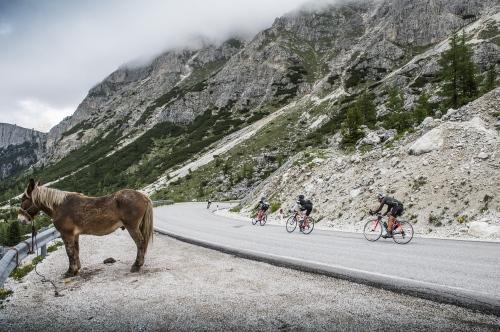 Maratona Dles Dolomites 2016 - 30th