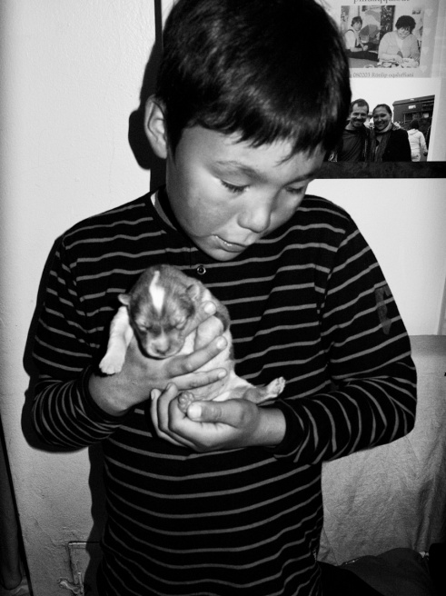 Art and Documentary Photography - Loading ArcticSpleen_Visura2011_19.jpg