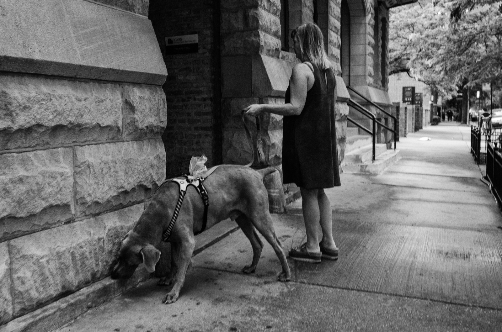 Woman with dog on Fullerton, Chicago 2017