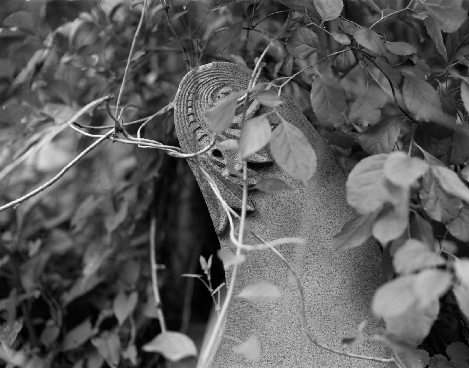 Art and Documentary Photography - Loading MtMoriah5.29.17scroll.jpg