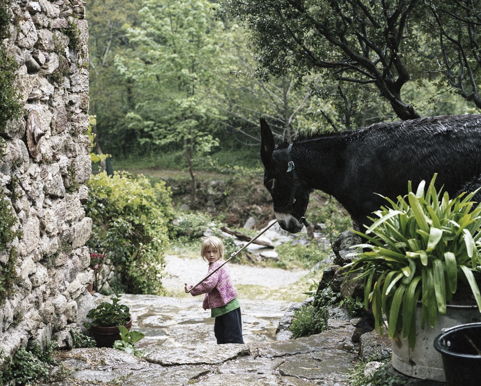 France,Amelie-Les-Bains. One of the daughter of Frauke. Frauke and his family decided to move on the Pyrenees, there they rebuilt a farm where they grow biological vegetable and host people that would like to help them in the farmer activities.