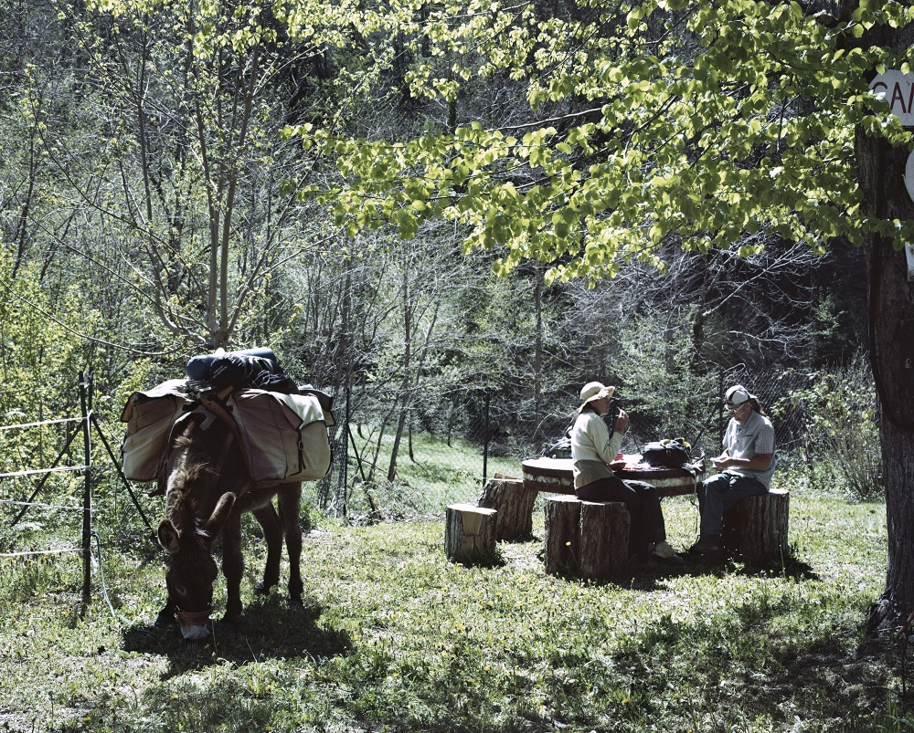 "France, Biert. Two tourists travelling in Ariege by donkeis. The Ariege region is today a refugee for travellers and Romani People, it also host several ""hippies"" communities and it is a open sky laboratory for alternative agriculture and farming."