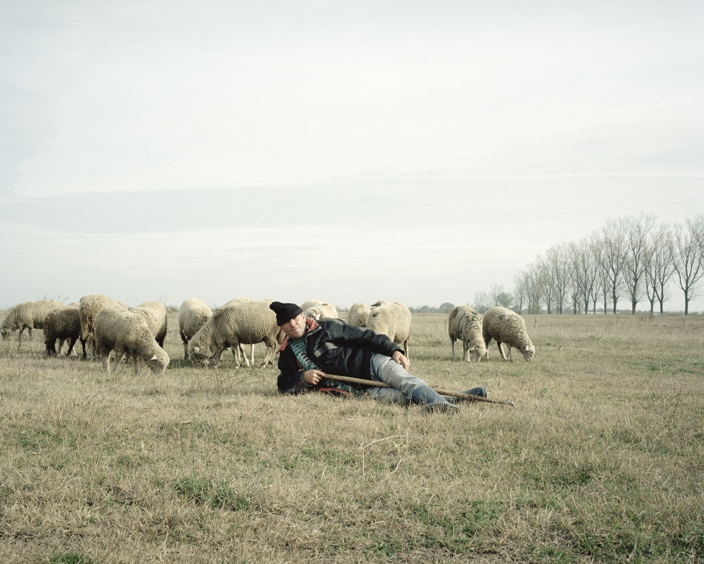 Romania, Calarasi. A farmer with his sheep.